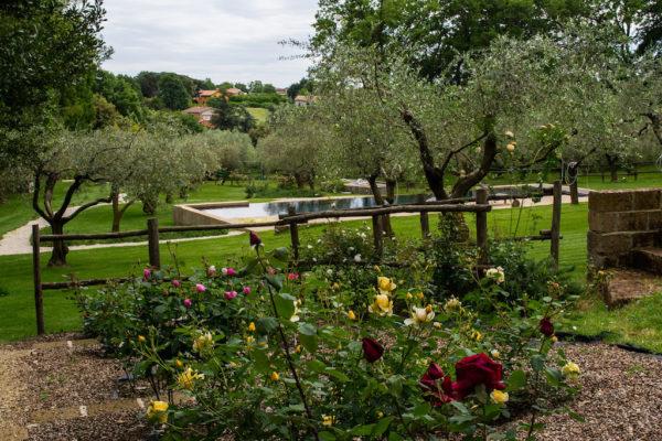 Le rose e la piscina  di Casacocò