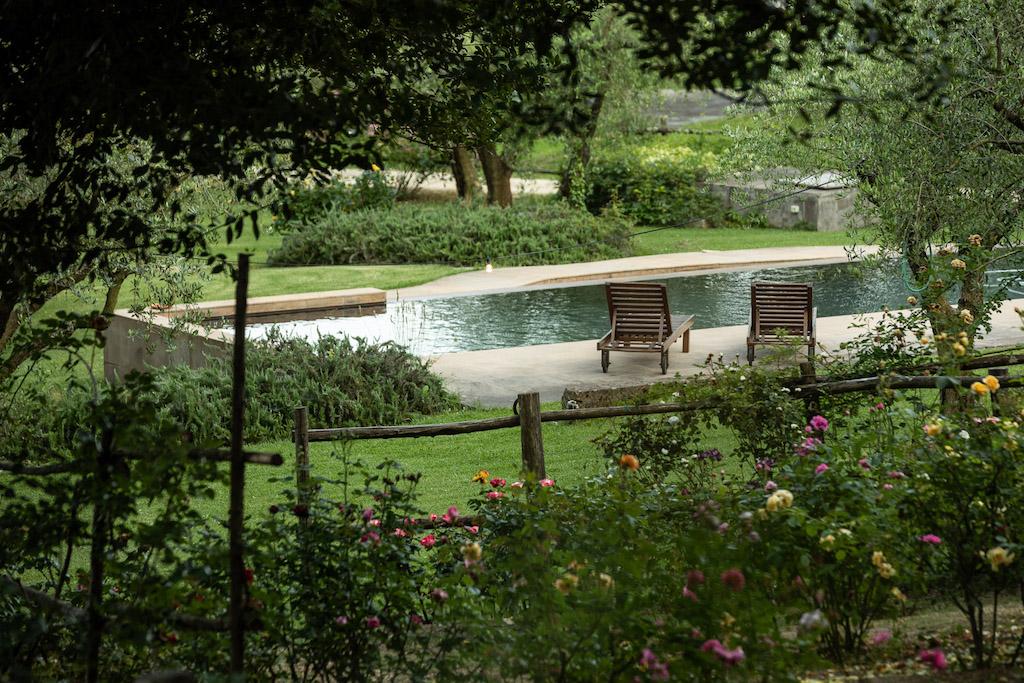 piscina e parco